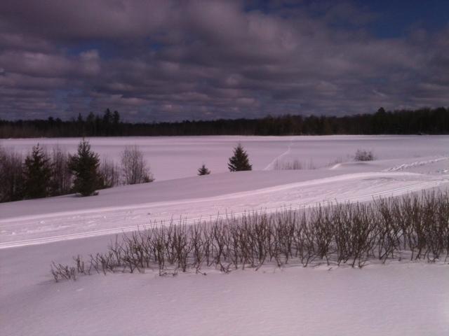 Gov Thompson SP Wood Lake trail