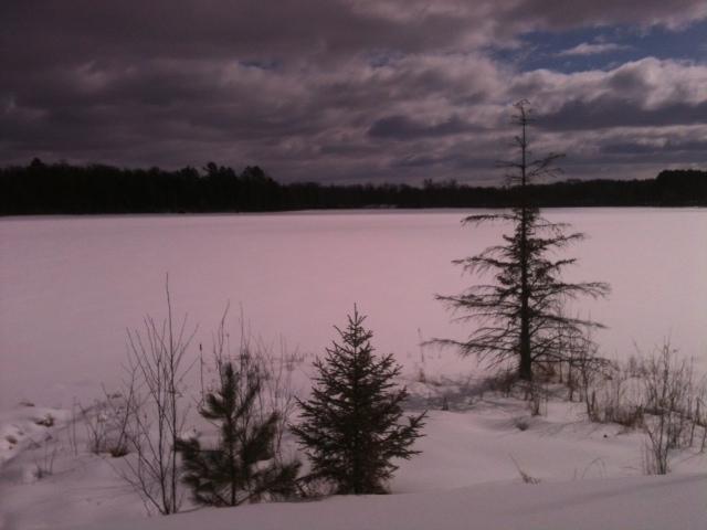 Wood Lake 1