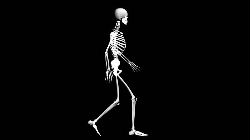 skeleton-walking